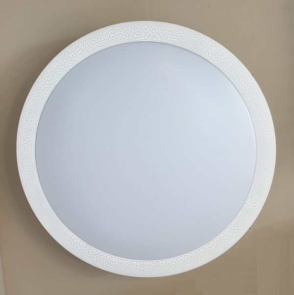Acrylic Ceiling Light D554